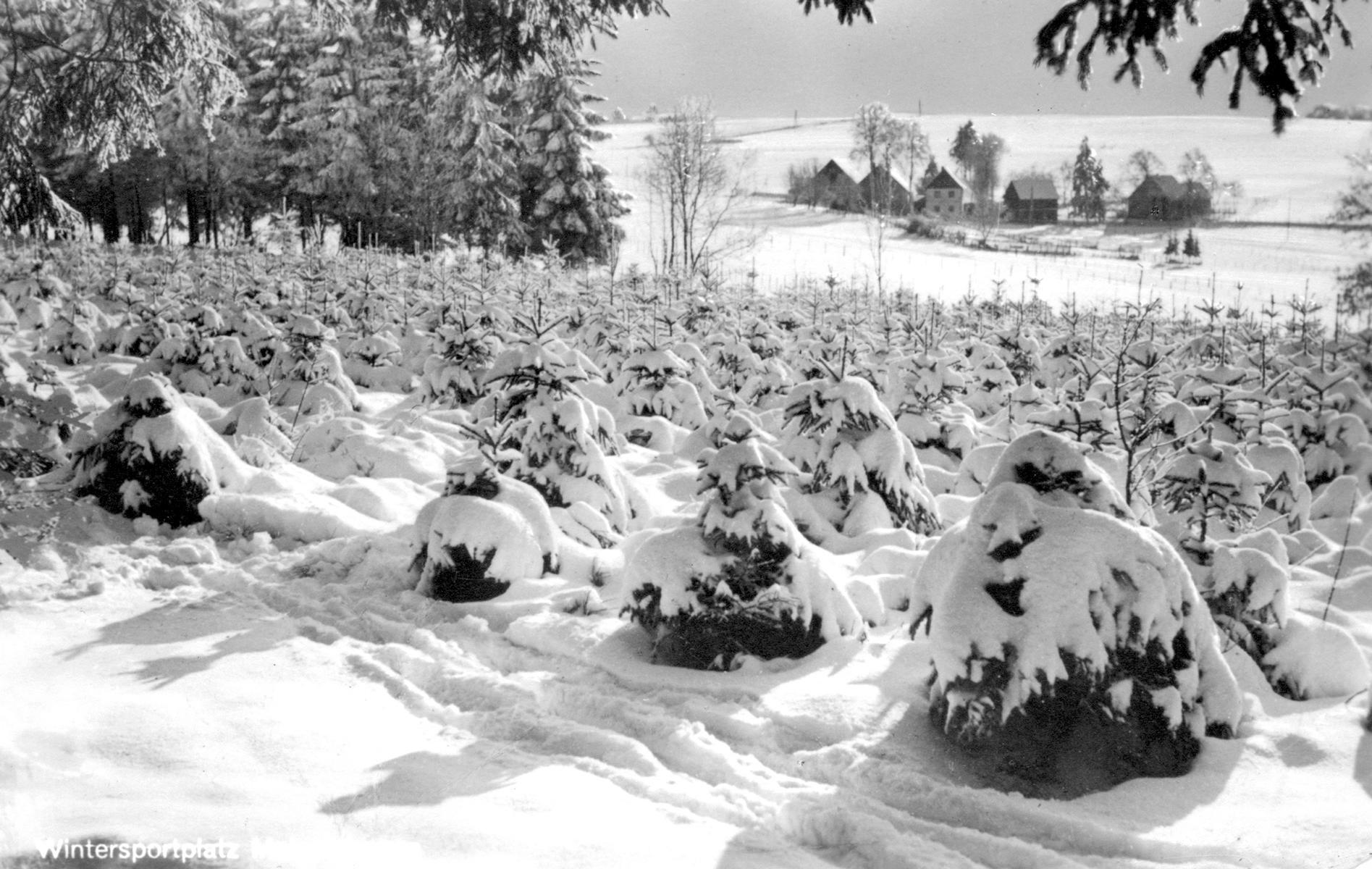 Wintersportplatz Meinerzhagen, Ideale Bedingungen für Wintersportler. © Foto: Stadtarchiv Meinerzhagen