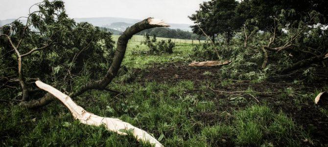 Häufiger Stürme und Starkregen zu befürchten