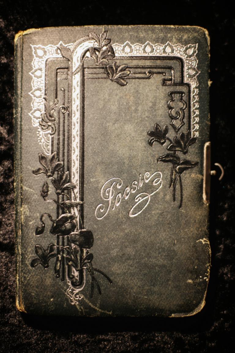Manche Alben sind mehr als 100 Jahre alt. © Foto: Stefanie Schildchen