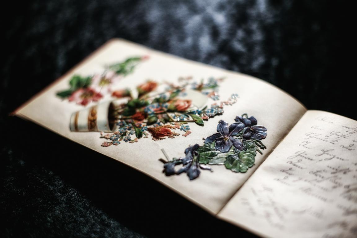 Wunderschöne Blumenbilder. © Foto: Stefanie Schildchen