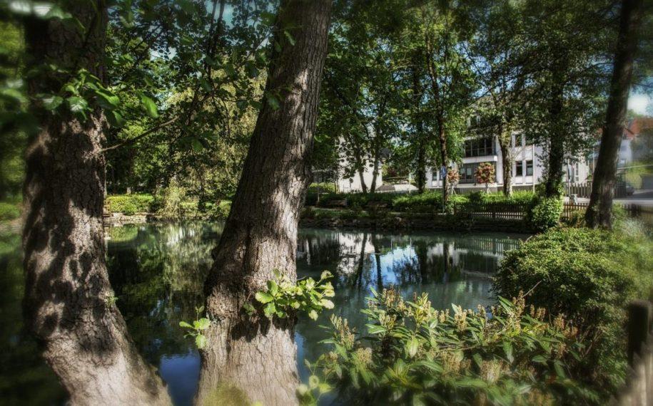 Volkspark in Meinerzhagen ©  2017 Foto: Stefanie Schildchen