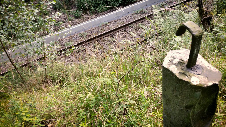 Alter Bahnweg von Meinerzhagen nach Kierspe © Foto: Stefanie Schildchen