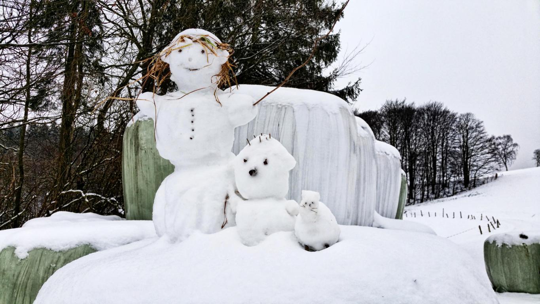 Stefanie Schildchen, Schneemänner in Hardenberg, Meinerzhagen